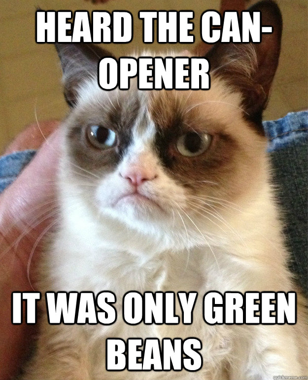 heard the canopener it was only green beans - Grumpy Cat
