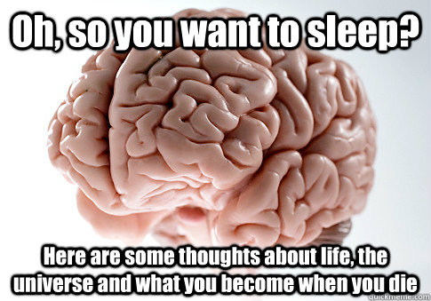 oh so you want to sleep here are some thoughts about life - Scumbag Brain