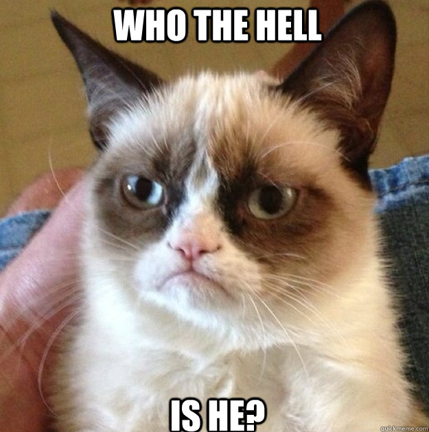who the hell is he  - Grumpy Cat