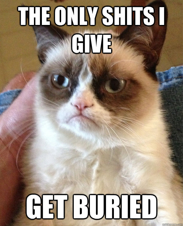 the only shits i give get buried  - Grumpy Cat