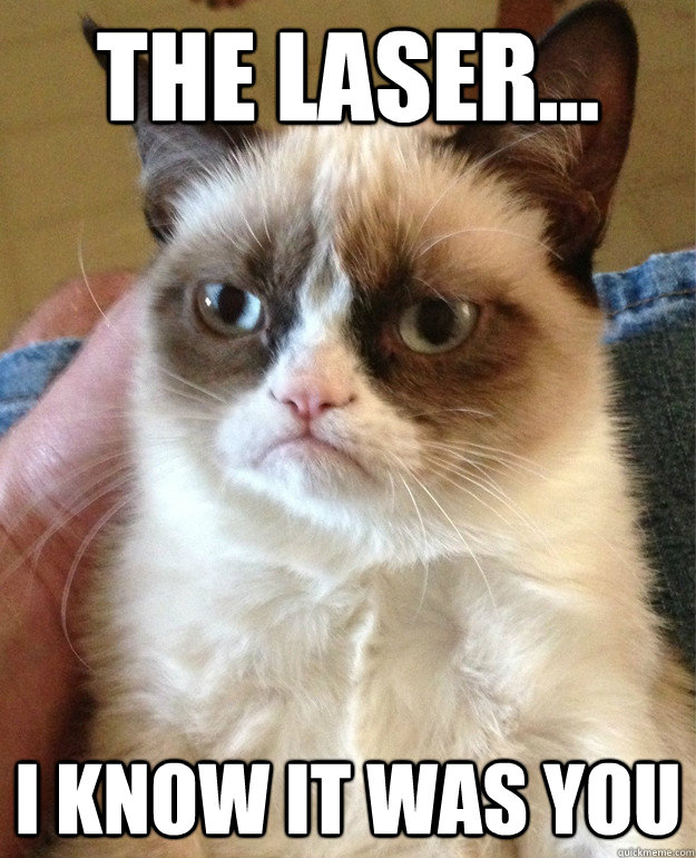 the laser i know it was you - cat had fun once