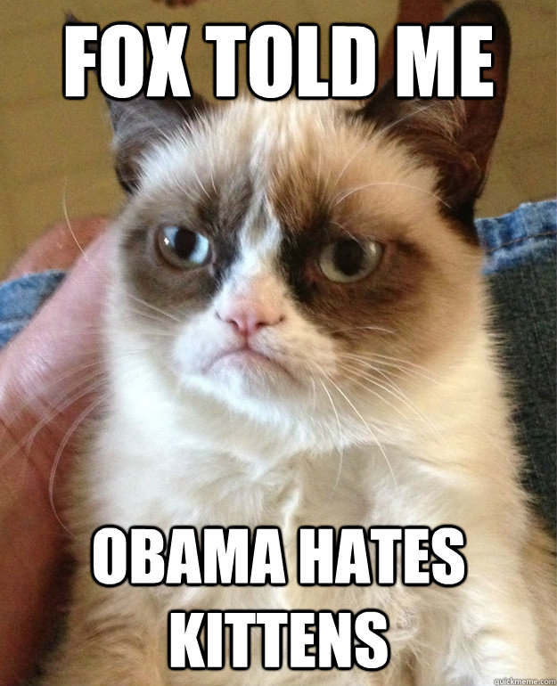 fox told me obama hates kittens - Grumpy cat