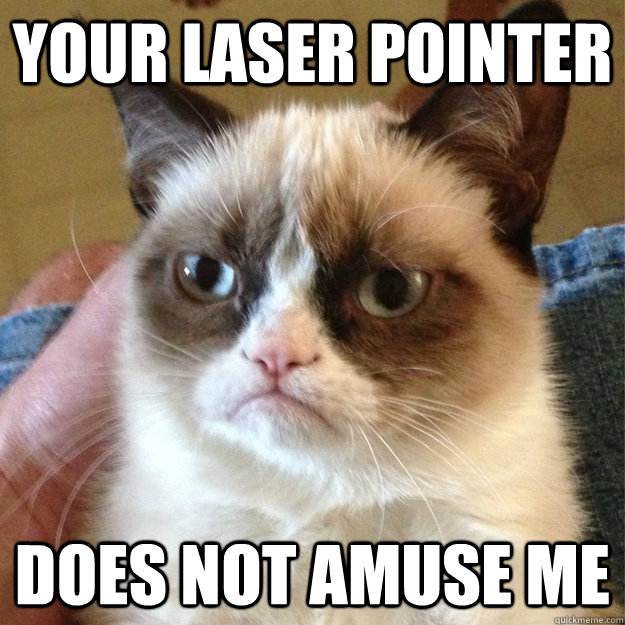 your laser pointer does not amuse me - Grumpy Cat