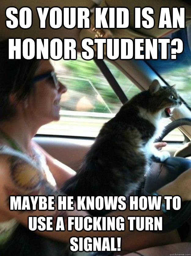 so your kid is an honor student maybe he knows how to use a - Road Rage Cat