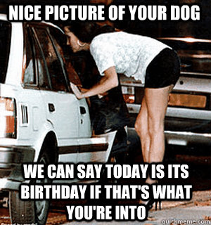 nice picture of your dog we can say today is its birthday if - Karma Whore