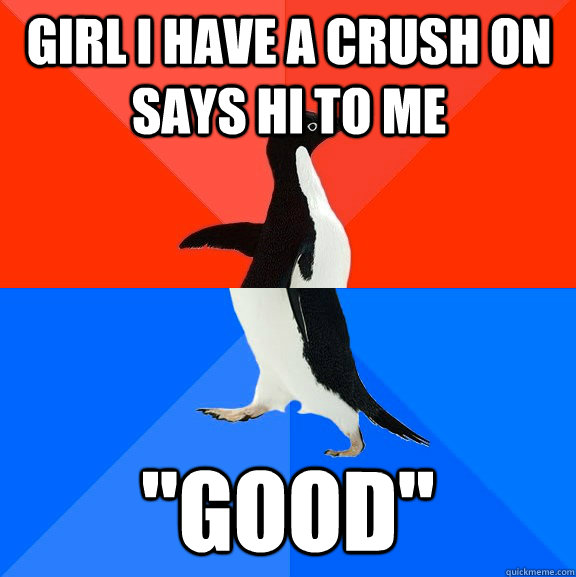 girl i have a crush on says hi to me good - Socially Awesome Awkward Penguin