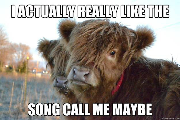 i actually really like the song call me maybe - Confession Cattle