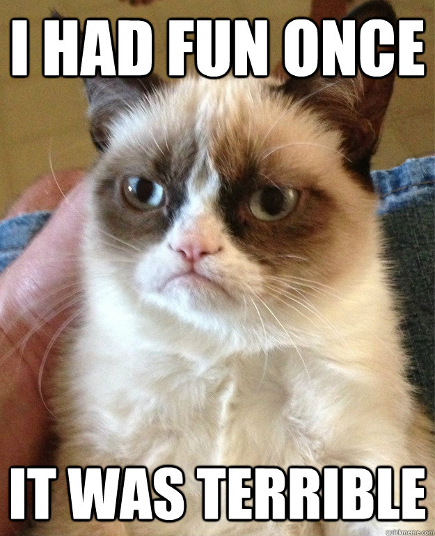 i had fun once it was terrible - Grumpy Cat