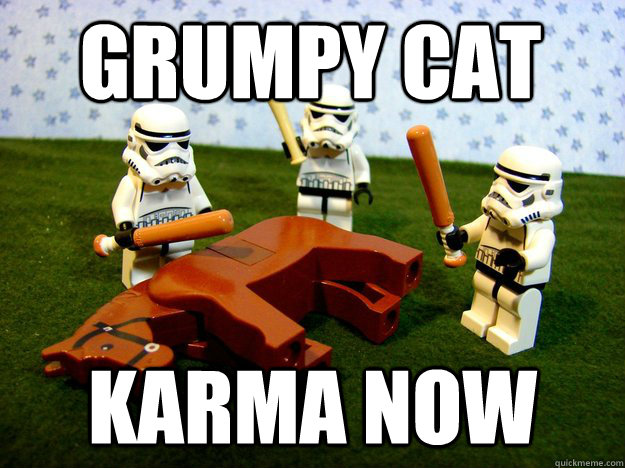 grumpy cat karma now - Beating Dead Horse Stormtroopers