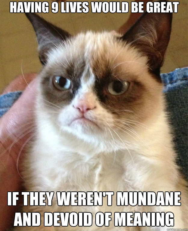 having 9 lives would be great if they werent mundane and de - Grumpy Cat