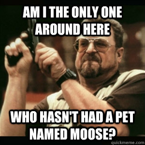 am i the only one around here who hasnt had a pet named moo - Am I The Only One Round Here