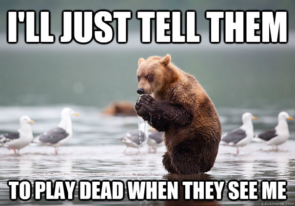 ill just tell them to play dead when they see me  - Evil Scheme Bear