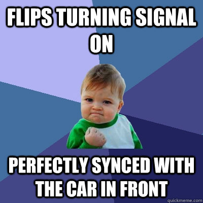 flips turning signal on perfectly synced with the car in fro - Success Kid