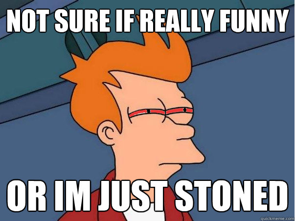 not sure if really funny or im just stoned - High Fry