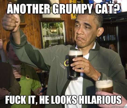 Another grumpy cat Fuck it he looks hilarious - Upvoting Obama