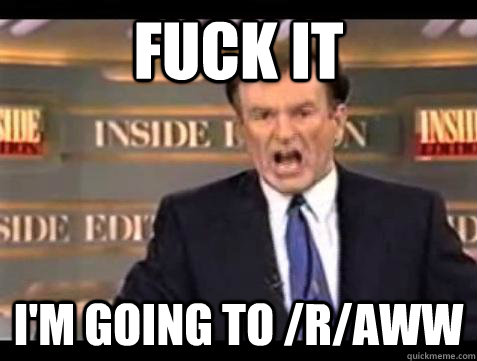fuck it im going to raww - Bill OReilly Fuck It
