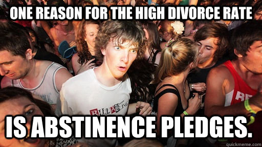one reason for the high divorce rate is abstinence pledges - Sudden Clarity Clarence