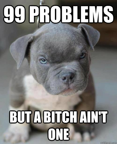99 problems but a bitch aint one -