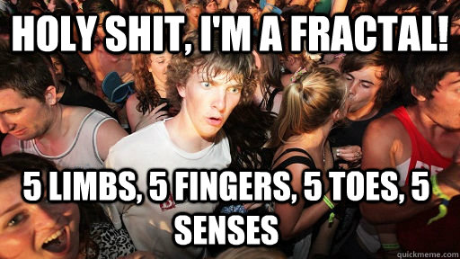 holy shit im a fractal 5 limbs 5 fingers 5 toes 5 sens - Sudden Clarity Clarence