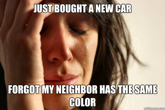 just bought a new car forgot my neighbor has the same color - First World Problems