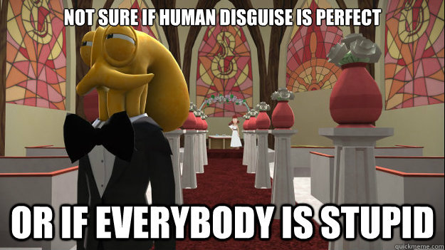 not sure if human disguise is perfect or if everybody is stu - suspicous octodad