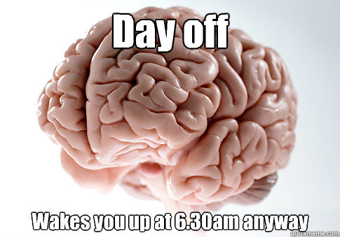 day off wakes you up at 630am anyway  - Scumbag Brain