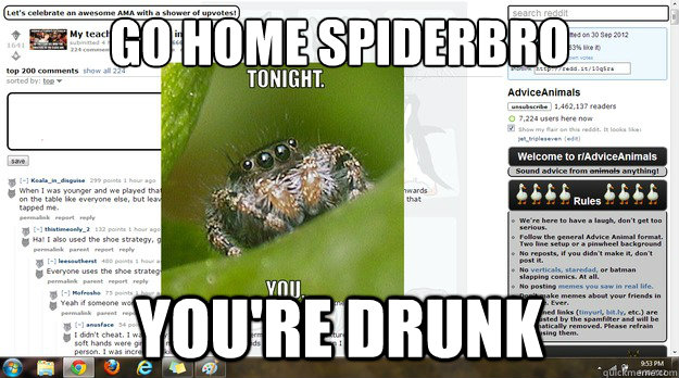 go home spiderbro youre drunk -