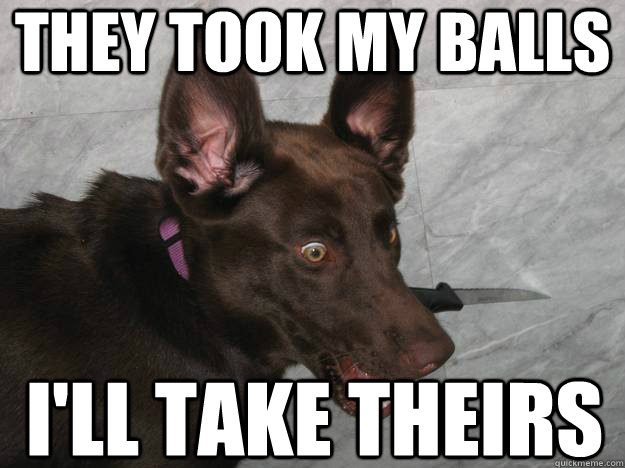 they took my balls ill take theirs - Psychopathic Dog