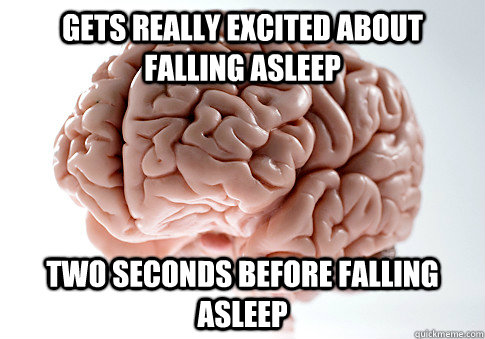 gets really excited about falling asleep two seconds before  - Scumbag Brain