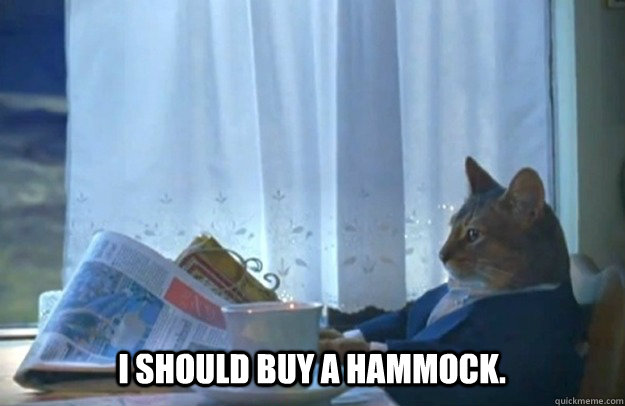 i should buy a hammock - Sophisticated Cat
