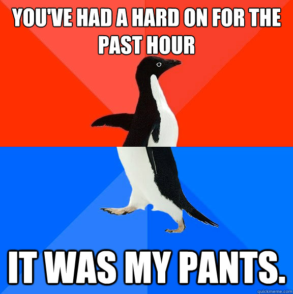 youve had a hard on for the past hour it was my pants - Socially Awesome Awkward Penguin