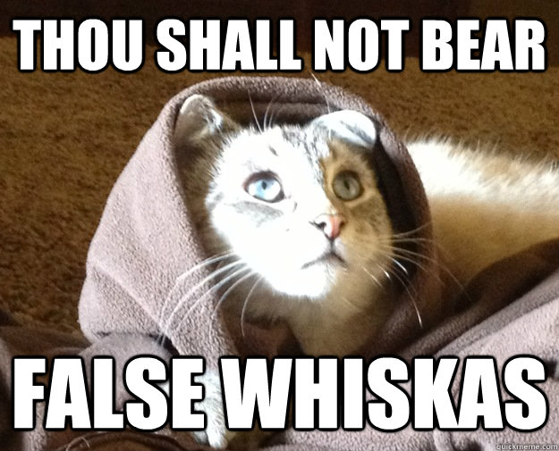 thou shall not bear false whiskas - Kitty Jesus
