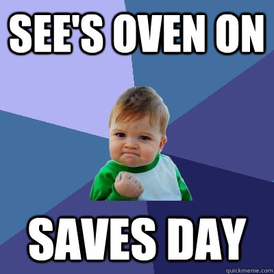 sees oven on saves day - Success Kid