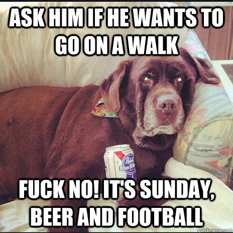 ask him if he wants to go on a walk fuck no its sunday be - Man Cave Dog
