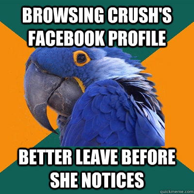 browsing crushs facebook profile better leave before she no - Paranoid Parrot