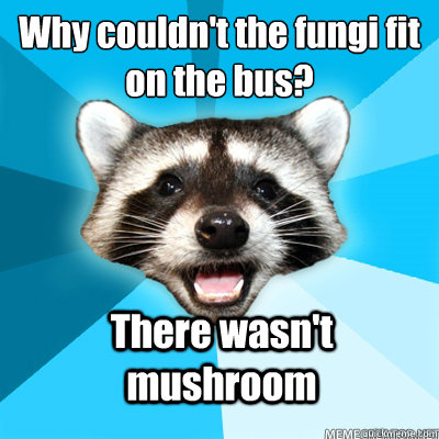 why couldnt the fungi fit on the bus there wasnt mushroom - Lame Pun Coon