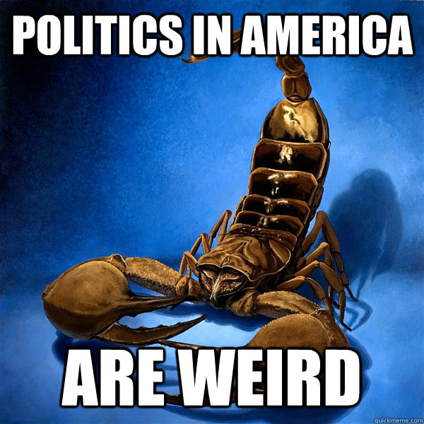 politics in america are weird -