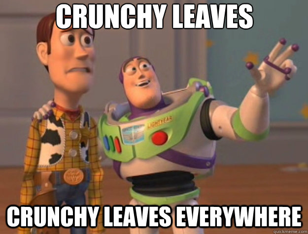 crunchy leaves crunchy leaves everywhere - Toy Story