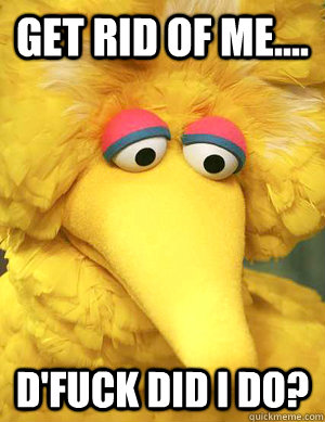get rid of me dfuck did i do  - Big Bird