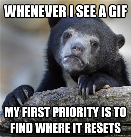 whenever i see a gif my first priority is to find where it r - Confession Bear