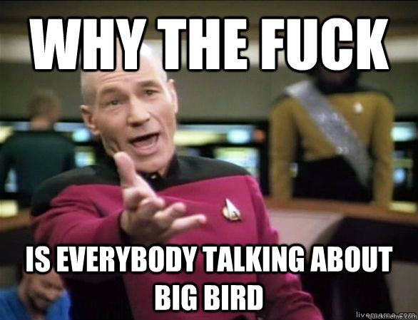 why the fuck is everybody talking about big bird - Annoyed Picard HD