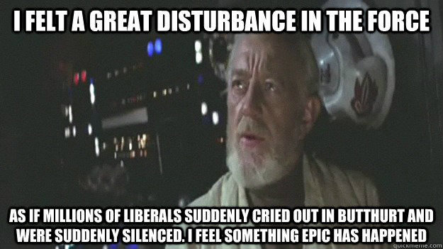 i felt a great disturbance in the force as if millions of li -