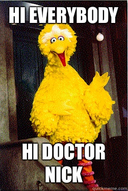 Hi everybody Hi doctor nick - too Big Bird