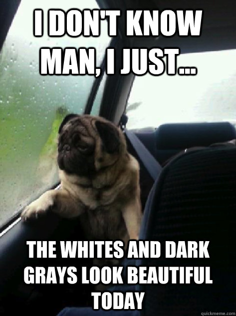 i dont know man i just the whites and dark grays look b - Introspective Pug