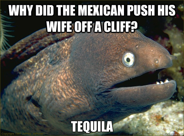 why did the mexican push his wife off a cliff tequila - Bad Joke Eel