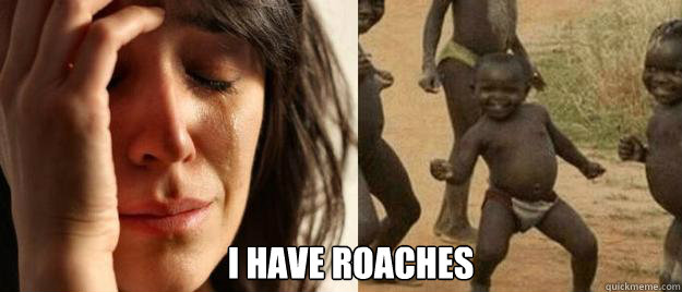 i have roaches - First World Problems  Third World Success