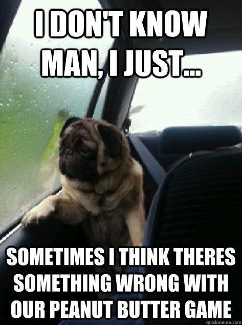 i dont know man i just sometimes i think theres somethi - Introspective Pug