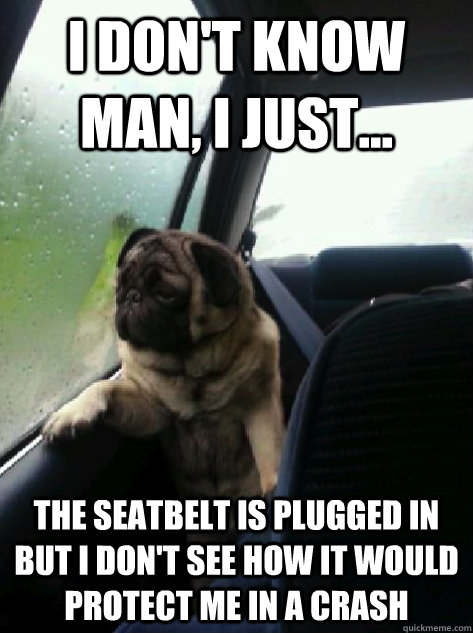 i dont know man i just the seatbelt is plugged in but i - Introspective Pug