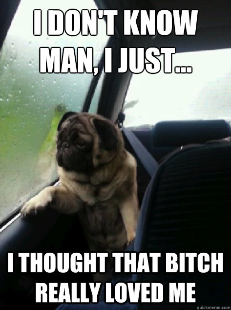 i dont know man i just i thought that bitch really lov - Introspective Pug