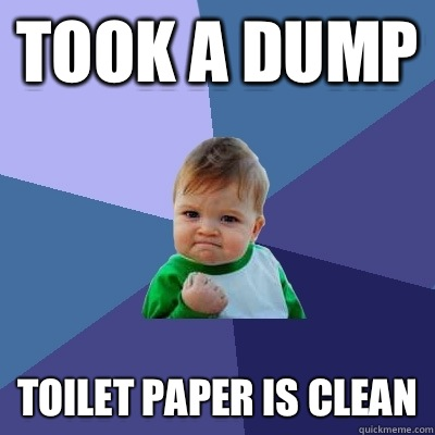 Took a dump Toilet paper is clean - Success Kid